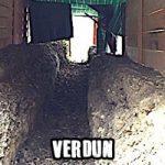Verdun et ses tranchées